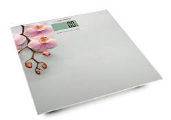 Váha Orchidej