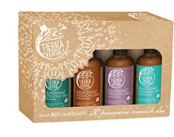 Set de odorizante BIO - Pentru zilele parfumate de iarnă (cutie de 4 buc)