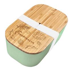 Lunch box L s oddeľovačom - Mint