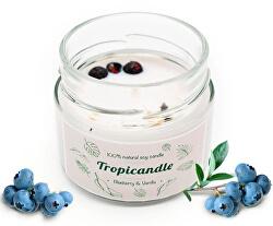 Tropicandle - Blueberry & Vanília