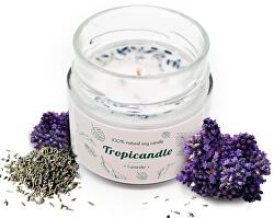 Tropicandle - Levander