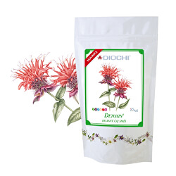 Detoxin bylinný čaj směs 100 g
