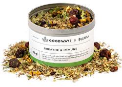 Breathe & Immune bylinný čaj 60 g