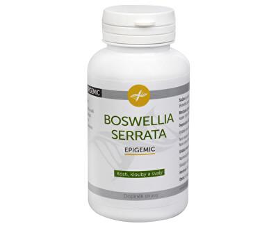 Boswellia Serrata Epigemic 90 kapsúl